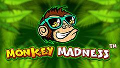 Mad Monkey